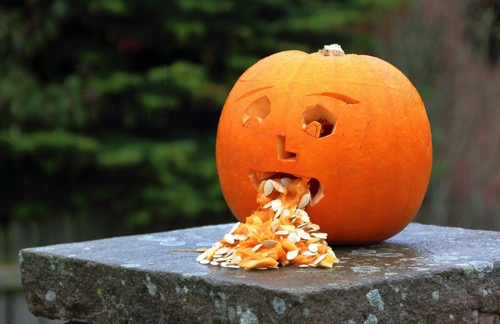 Pumpkin 3630614 1280