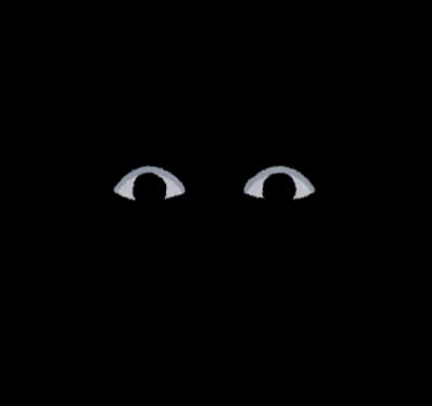 Eye nozoku shinen