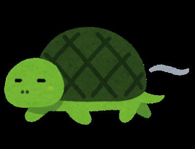 Speed slow turtle