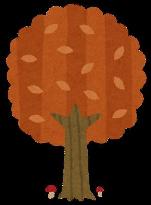 Tree3 aki